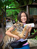 ZOO - Animals : Animal, zoo   (pets are in another catagory)